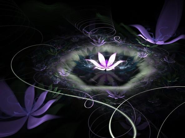 la flor de buda