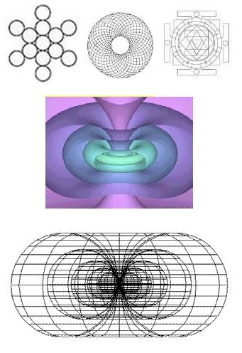 planos dimensionales en toroides